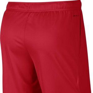 Nike Shorts - NIKE Men s Dry Epic Training 9